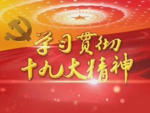 中共中央关于认真学习宣传贯彻党的十九大精神的决定