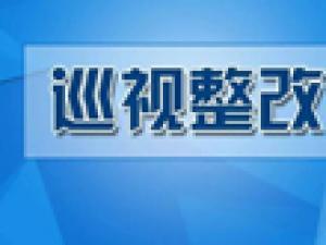 湖南省文联党组关于巡视整改进展情况的通报